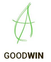 Фирма Goodwin